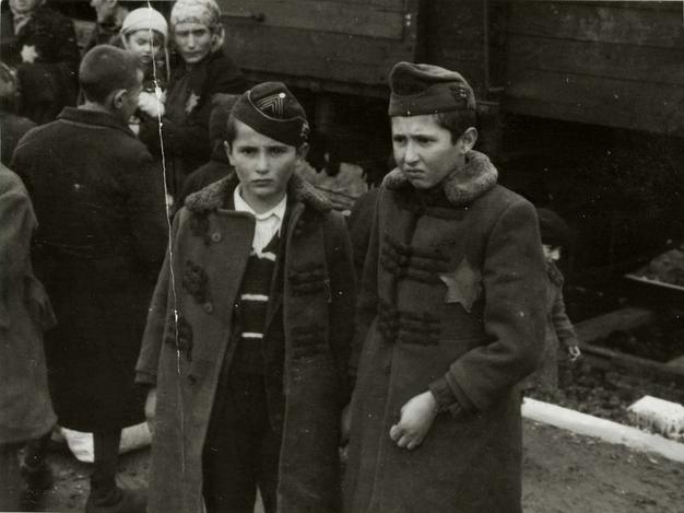 Spojrzenia z Auschwitz